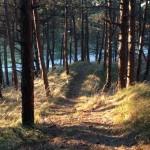 vuurtoren, trail, ameland