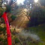 vuurtorentrail, Ameland, Robin Kinsbergen, trail, trailrunning