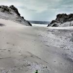 vuurtorentrail, ameland, trailrunning